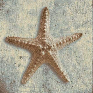 Артефакты океана